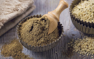 Why is Fibre Important for the Body?